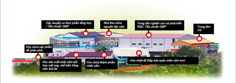 Sơ đồ nhà máy Nhân sâm Daedong Korea Ginseng