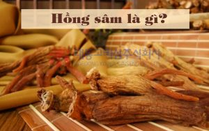 hong-sam-la-gi-phan-loai-hong-sam-han-quoc-4